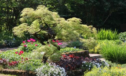 United States Botanic Garden Quick Facts